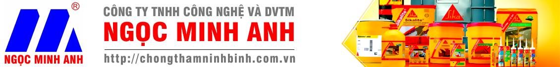 Công ty TNHH công nghệ và dịch vụ thương mại Ngọc Minh Anh